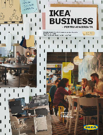 IKEA - Business 2019   30 Iunie - 30 Iunie